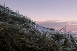 Ice at Seljalandsfoss