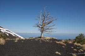 Etna North Side