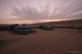 Wahiba Sands early morning
