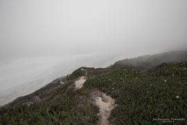 Coastline Foz do Arelho