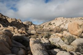 Barker Dam - Joshua Tree NP