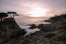 The Lone Cypress - 17 miles drive